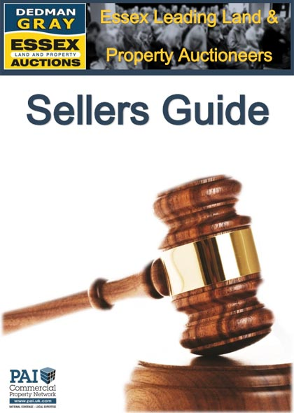 Seller's Guide to Auction