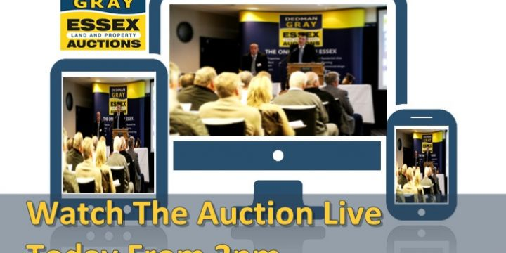 Watch Today's Auction Live From 2pm